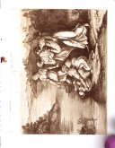 Sivu 27