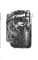 Sivu 354