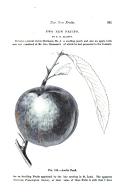 Sivu 361