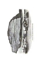 Sivu 440