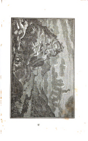 Sivu 229