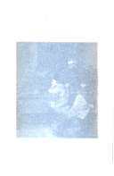 Sivu 174