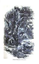 Sivu 83