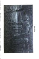 Sivu 125