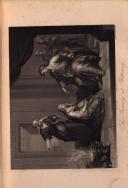 Sivu 195