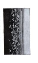 Sivu 388