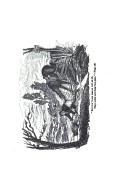 Sivu 164