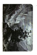 Sivu 41
