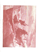 Sivu 89
