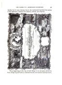 Sivu 91