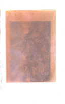 Sivu 260