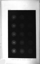 Sivu 232
