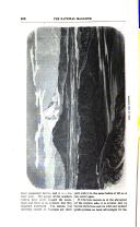 Sivu 506