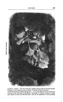Sivu 507