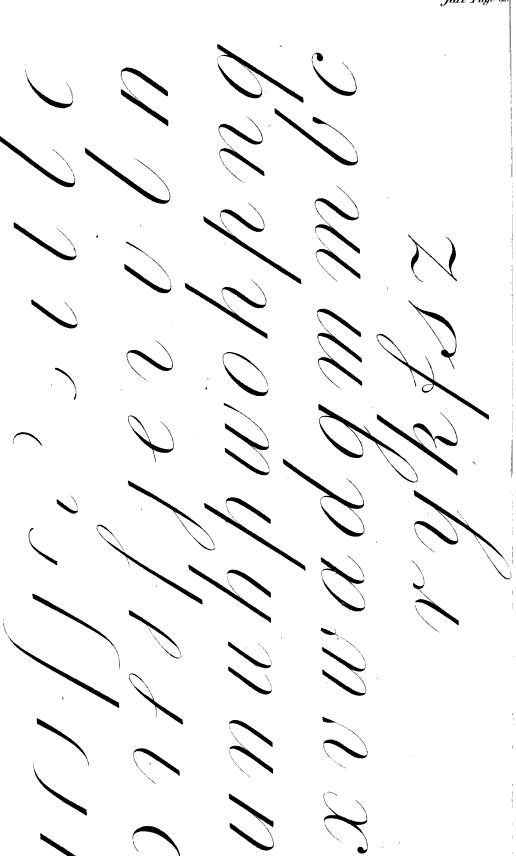 [merged small][ocr errors][ocr errors][ocr errors][subsumed][subsumed][ocr errors]