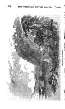 Sivu 204